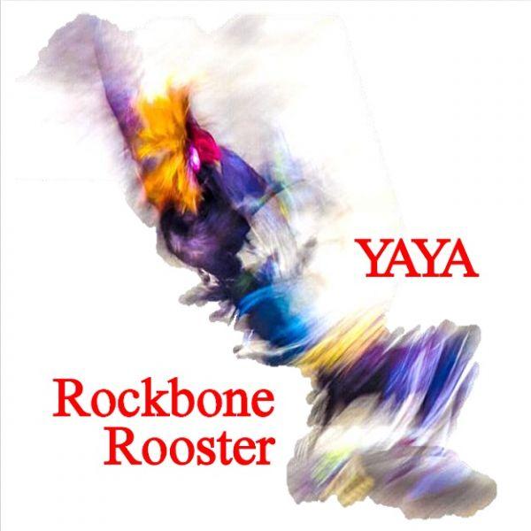 Drittes Album Rockbone Rooster